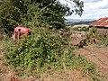 Old tractor at Barns Farm - geograph.org.uk - 213727.jpg