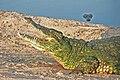 Open mouth Crocodile.jpg