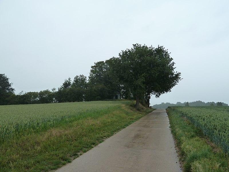 Tumulus d'Otrange, Oreye, Belgique