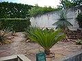 Orléans - jardin des plantes (18).jpg