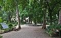 Orto Botanico Florence - panoramio.jpg