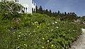 Os, Norway - panoramio (10).jpg