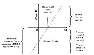 Forward osmosis - Family of osmotic membrane processes, including reverse osmosis and forward osmosis