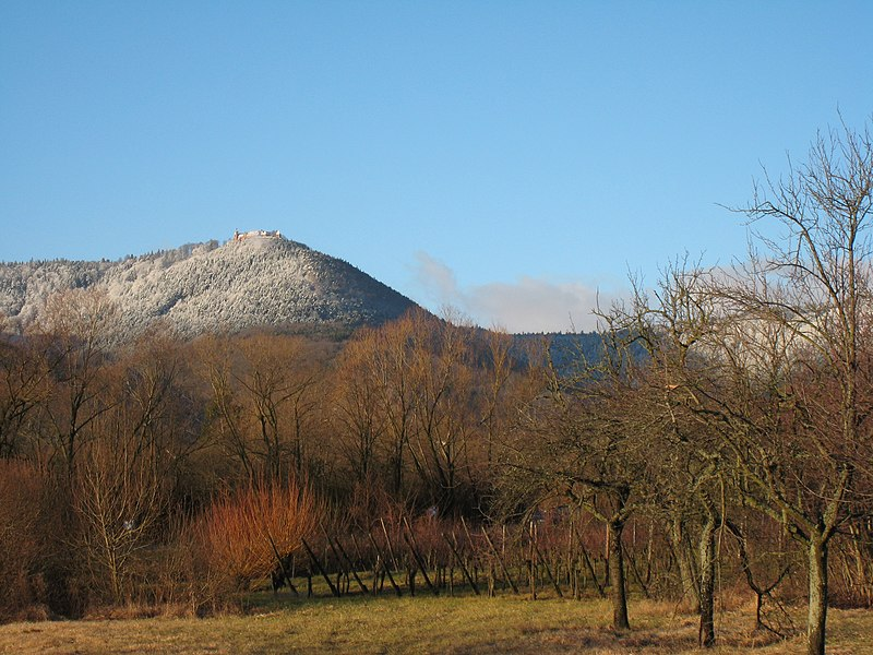 [Image: 800px-Ottrott_Mont_Sainte-Odile.JPG]