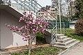 Pörtschach Johannes-Brahms-Promenade Tennis Center Freitreppe 07042016 1191.jpg