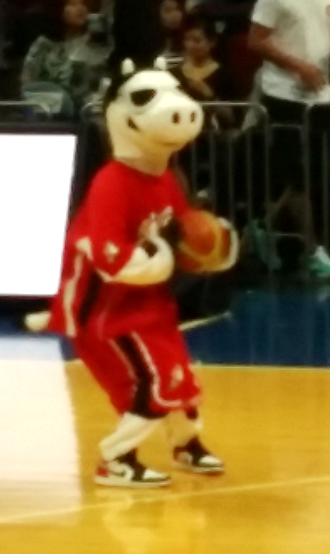 Alaska Aces (PBA) - E. Cow doing a shootaround during the halftime break of the Aces' game against Barangay Ginebra.