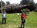 PIEDRAS DEL TUNJO, COLOMBIA.jpg