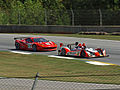 PLM 2011 89 Intersport LMPC 2.jpg