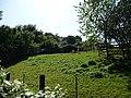 Paignton , Paignton Zoo, Bongo Enclosure - geograph.org.uk - 1483763.jpg