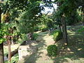 Palazzo gianni vegni, giardino 01.JPG