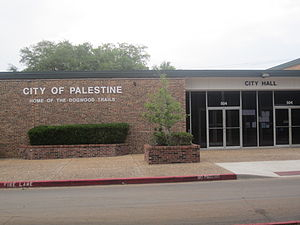 Palestine, TX, City Hall IMG 2312.JPG