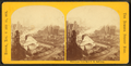 Panorama from new P.O. building, from Robert N. Dennis collection of stereoscopic views 13.png
