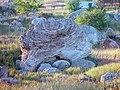 Panoramio - V&A Dudush - Прибрежные камни.jpg