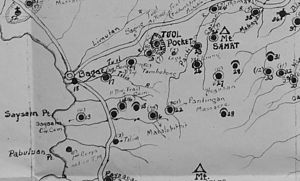 Bataan Death March - Portion of Bataan disinterment map highlighting the site of the 1942 Pantingan Massacre.