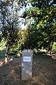 Papaveri alti alti (Rignano sull'Arno) 01.jpg