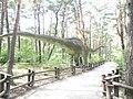 Park Dinozaurów w Solcu Kujawskim - panoramio (12).jpg