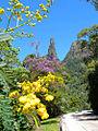 Parque Nacional Serra Dos Órgãos - Dedo De Deus - Flores.jpg