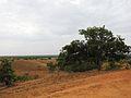 Parque nacional Aguaro-Guariquito 001.jpg