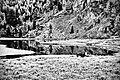 Pascoli al Lago nero.jpg