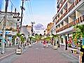 Paseo Peatonal San Andres.JPG