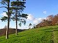 Pasture, Hughenden - geograph.org.uk - 1066638.jpg