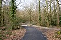 Path and Cycleway at Lord's Hill - geograph.org.uk - 1200301.jpg