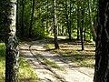Pathway - panoramio.jpg