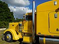 Peterbilt, yellow (2).jpg