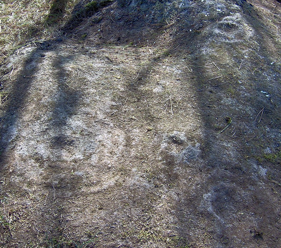 Petroglifos en Eiras