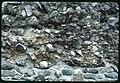 Pfyn. Dettaglio di un muro romano (DOI 25769).jpg