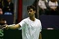 Philipp Petzschner Davis Cup 05032011 1.jpg