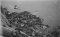 Photo-TokyoAirRaids-1945-3-10-Honjo Drowned Bodies.png