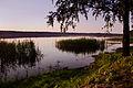 Piaseczno - jezioro.jpg
