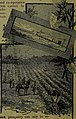 Pictorial review of the city of Paris and Lamar county, Texas (1885) (14778757844).jpg