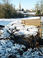 Pigs in snow, Brington - geograph.org.uk - 1152138.jpg