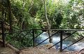 PikiWiki Israel 42228 Banias River.jpg