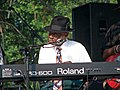 Pinetop Perkins 2008.jpg