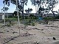 Plage - panoramio (4).jpg
