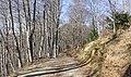 Plateau d'Aillou, France 06.jpg