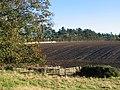 Ploughed field, Leaston. - geograph.org.uk - 83065.jpg