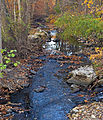 Pocantico River at Rockefeller Brook confluence.jpg
