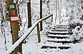 Poertschach Glorietteweg Ostteil 28012014 232.jpg