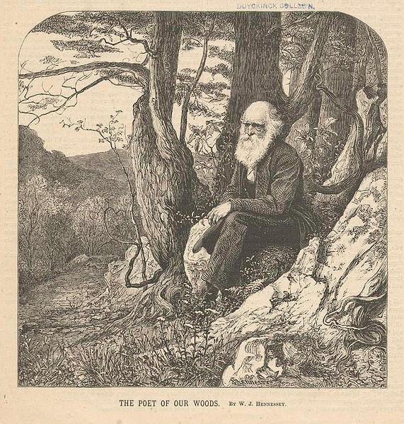 File:Poet of our woods.jpg