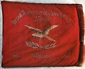Sokół - Banner of the Będzin-based Sokół nest