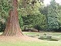 Pond in Tring Memorial Park - geograph.org.uk - 1514813.jpg