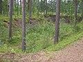 Pontuksen kaivanto 2014-08-14.JPG