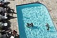 Pool time (31671301373).jpg