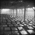 Poston, Arizona. Adobe factory drying racks - NARA - 536624.tif