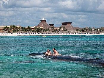 Praia do hotel Bah%C3%ADa Pr%C3%ADncipe - Quintana Roo - M%C3%A9xico-18