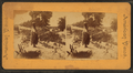 Pueblo woman balancing a pot on her head, from Robert N. Dennis collection of stereoscopic views.png